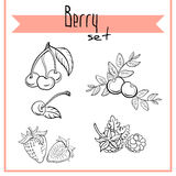 BerrySet1 vector illustratie