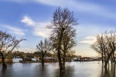 Überschwemmtes Land mit sich hin- und herbewegenden Häusern bei Sava River - neues Belgrad - Stockfoto