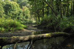 Berthin Brook, Usk Stock Photography