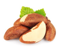 Bertholletia.Brazil nuts Stock Photo