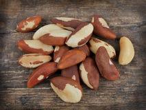 Bertholletia.Brazil nuts Stock Image