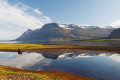 Berufjordur fjord, Djupivogur Island royaltyfria bilder