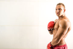 Berufsboxer fighthing lizenzfreie stockfotos