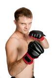 Berufsboxer getrennt auf weißem Hintergrund Stockfotografie