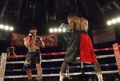 Berufsboxer im Matchup Stockfotos