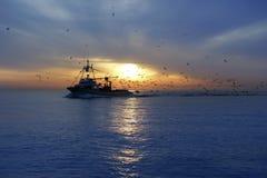 Berufsfischerbootseemöwesonnenaufgang Stockfoto