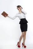 Berufsfrau Stockbilder