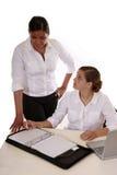 Berufsfrauen mit Laptop Stockfotografie
