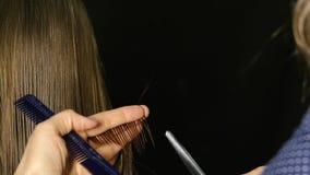 Berufsfriseur trennt die Haarstränge, die Knalle der Klientin im Friseursalon schneiden Langsame Bewegung stock video