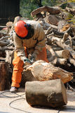 Berufsholzfäller bei der Arbeit im Wald Stockfotos