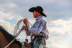 Berufskalb Roper, das ein Wranglerhemd und einen Cowboyhut trägt lizenzfreies stockfoto