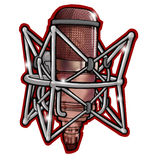 Berufsmikrofon für Musik Stockbild