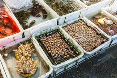 beruhigt und Hummer im Fischmarkt in Guangzhou stockbilder
