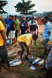 Beruwala, Sri Lanka - 10 febbraio 2017: Il gruppo di venditori ed i clienti negoziano al mercato ittico nell'area di Aluthgama o  immagine stock libera da diritti