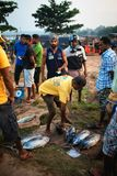 Beruwala, Sri Lanka - 10 February, 2017: Group of sellers and customers bargain at fish market in Bentota or Aluthgama area. Beruwala, Sri Lanka - 10 February royalty free stock image