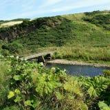 Bervie do rio Imagem de Stock Royalty Free