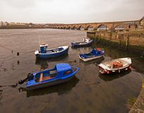 Berwick Bridge and River Tweed Royalty Free Stock Photos