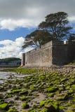 Berwick sur des murs de tweed Photographie stock libre de droits