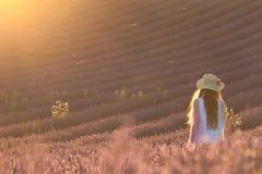 Überwältigt auf einem Lavendel-Gebiet Stockbilder