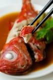 Beryx en sauce de soja Image stock
