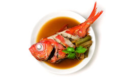 Beryx in soy sauce royalty free stock image