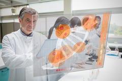 Überzeugter Wissenschaftler, der mit Tablette und futuristischer Schnittstelle arbeitet Stockfotografie