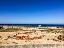Besök till Tripoli i Libyen i 2016 royaltyfri foto