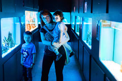 Besöka akvariet Royaltyfri Bild