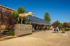 Besökare på den främre ingången av det kungliga Tyrrell museet av Palaeontology royaltyfri bild