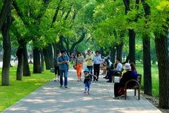 Besökarna i parkera Arkivbilder