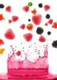 Bes en fruit royalty-vrije stock foto's