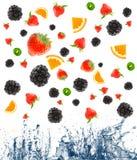 Bes en fruit die in sap vallen. stock foto's