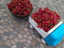 Bes rood gezond voedsel, de zomerbes in een kom stock afbeelding