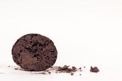 Beschadigd rijp puffball algemeen gevonden in daling van NC Royalty-vrije Stock Afbeeldingen