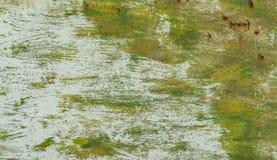 Beschaffenheit - Blätter des Rost-farbigen Metalls Stockfotos