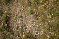 Beschaffenheit der Erde mit Gras, Kopfsteine, Steine Berglandschaft, Steppe, Waldsteppe stockfotografie
