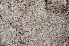 Beschaffenheit der hohen Auflösung des Sandsteins und -Betonmauern gesehen in Dubai stockfotografie