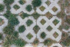 Beschaffenheit der Pflasterung mit Nahaufnahme des grünen Grases lizenzfreie stockfotografie