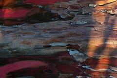 Beschaffenheit der roten Baumrinde stockbild