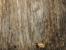 Beschaffenheit des alten hölzernen Gebrauches der Barke als natürlicher Hintergrund Stockfotos