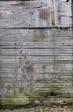 Beschaffenheit des alten Holzes Lizenzfreie Stockbilder