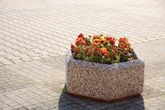 Beschaffenheit des alten Steinfußbodens und der Blumen Lizenzfreie Stockfotografie