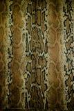 Beschaffenheit des Gewebes streift Schlangenleder für Hintergrund Lizenzfreies Stockbild