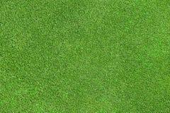 Beschaffenheit des grünen Grases