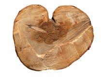 Beschaffenheit des Holzes, weißer Hintergrund Stockfotografie