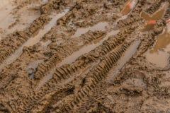 Beschaffenheit des nassen braunen Schlammes mit Fahrradreifenbahnen Lizenzfreies Stockfoto