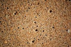 Beschaffenheit des nassen Sandes Stockbild