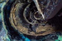 Beschaffenheit des natürlichem unbehandeltem Perlenammonitmakro lizenzfreie stockbilder