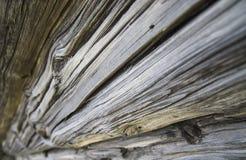 Beschaffenheit des Naturholzes, alte Klotz mit Sprüngen Lizenzfreie Stockfotos