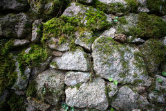 Beschaffenheit des Natursteins und des Mooses Stockfotografie